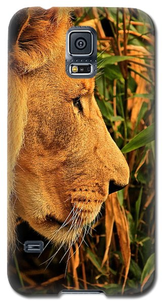 Profiles Of A King Galaxy S5 Case by Laddie Halupa