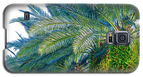 Galaxy S5 Case featuring the photograph Progression Of Palms by Joy Hardee