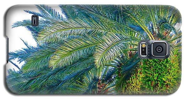 Progression Of Palms Galaxy S5 Case by Joy Hardee