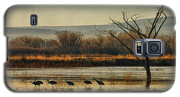 Galaxy S5 Case featuring the photograph Promenade Of The Cranes by Priscilla Burgers