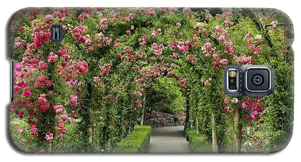 Galaxy S5 Case featuring the photograph Rose Promenade   by Natalie Ortiz