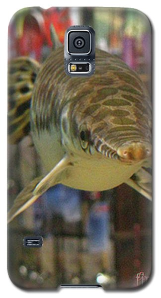Galaxy S5 Case featuring the photograph Protected Gar by Donna Brown