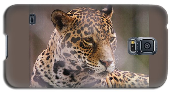 Out Of Africa Galaxy S5 Case