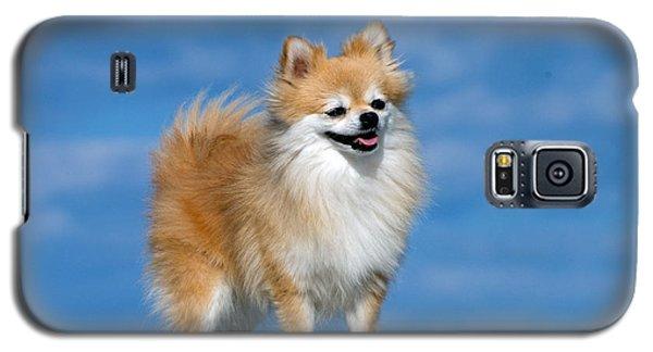 Proud Galaxy S5 Case