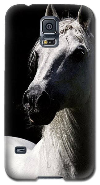 Proud Stallion Galaxy S5 Case