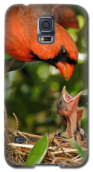 Provider Galaxy S5 Case by Kelly Nowak