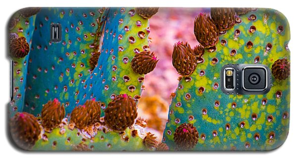 Galaxy S5 Case featuring the photograph Psychedelic Cactus by Glenn DiPaola