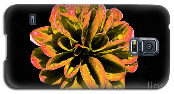 Psychedelic Flower 8 Galaxy S5 Case