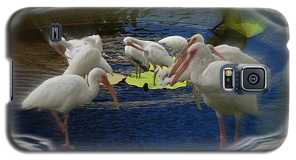 Galaxy S5 Case featuring the photograph Puddle Of Ibis by Irma BACKELANT GALLERIES