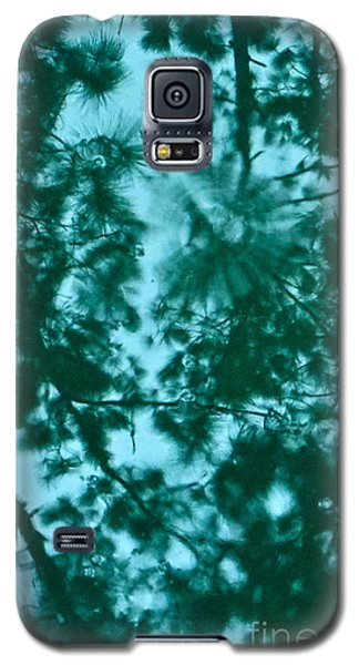 Galaxy S5 Case featuring the photograph Puddle Of Pines by Joy Hardee
