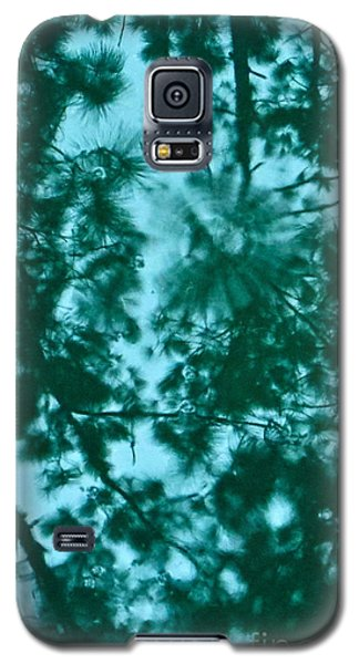 Puddle Of Pines Galaxy S5 Case by Joy Hardee