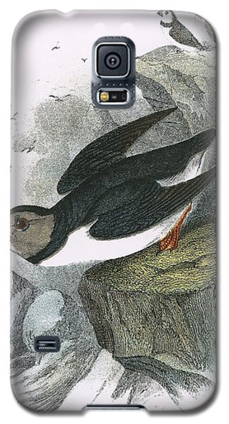 Puffin Galaxy S5 Case by English School