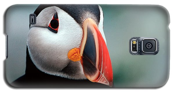 Galaxy S5 Case featuring the photograph Puffin Head Shot by Jerry Fornarotto