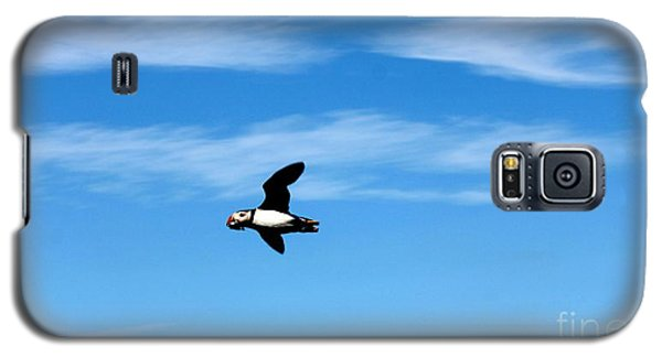 Puffin In Flight Galaxy S5 Case