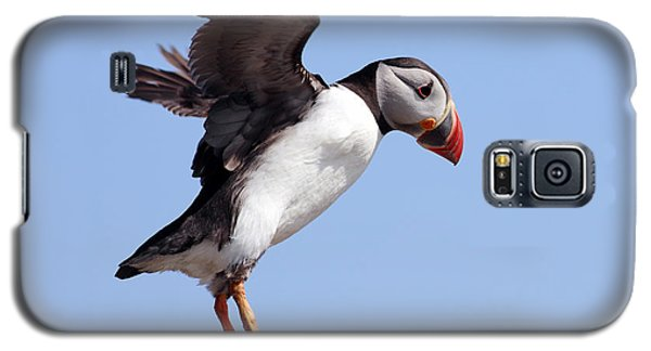 Puffin In Flight Galaxy S5 Case by Grant Glendinning
