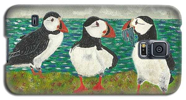 Puffin Island Galaxy S5 Case by John Williams