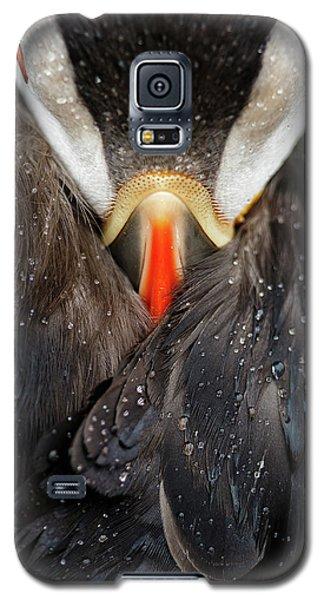 Puffin Studio Galaxy S5 Case