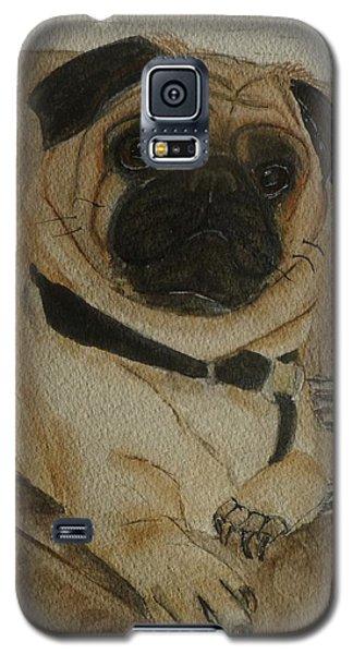 Pug Dog All Ready To Cuddle Galaxy S5 Case by Kelly Mills
