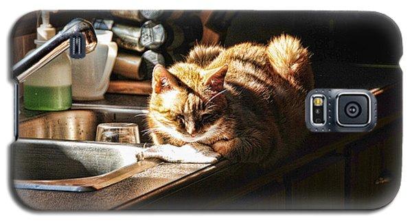 Pum'kins Sunbeam Galaxy S5 Case