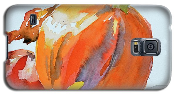 Galaxy S5 Case featuring the painting Pumpkin And Pomegranate by Beverley Harper Tinsley