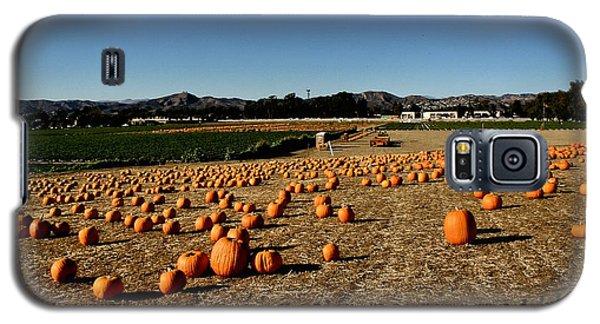 Galaxy S5 Case featuring the photograph Pumpkin Field by Michael Gordon