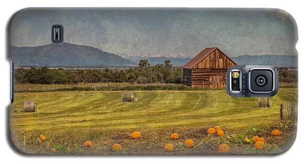 Pumpkin Field Moon Shack Galaxy S5 Case