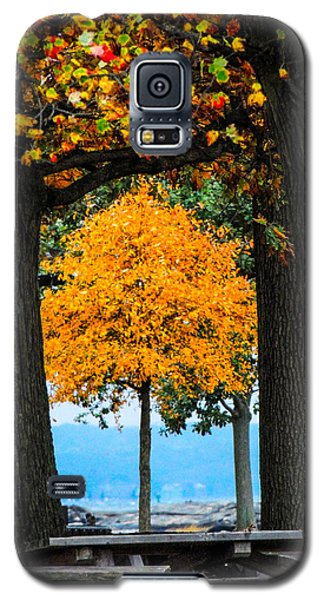 Pumpkin Head Galaxy S5 Case