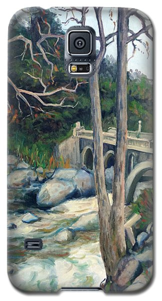 Pumpkin Hollow Bridge Galaxy S5 Case