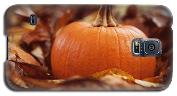 Pumpkin In Leaves Galaxy S5 Case