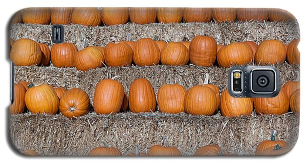 Galaxy S5 Case featuring the photograph Pumpkin by Lora Lee Chapman