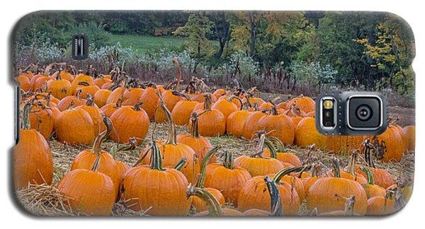 Pumpkin Parade Galaxy S5 Case