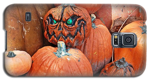 Pumpkin Patch Galaxy S5 Case by Aimee L Maher Photography and Art Visit ALMGallerydotcom