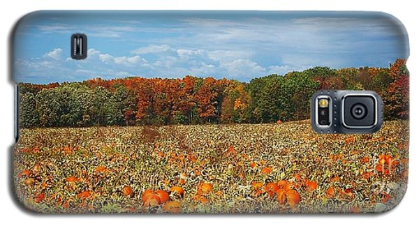 Pumpkin Patch - Panorama Galaxy S5 Case