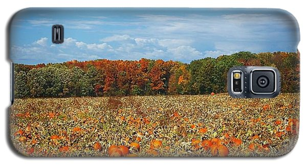 Pumpkin Patch - Panorama Galaxy S5 Case