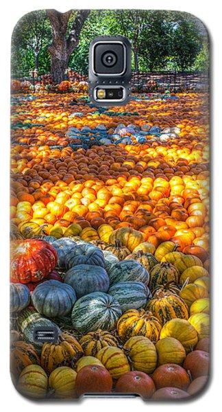 Pumpkin Patch Galaxy S5 Case