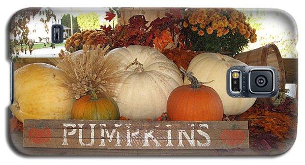 Pumpkin Welcome  Galaxy S5 Case by Barbara McDevitt