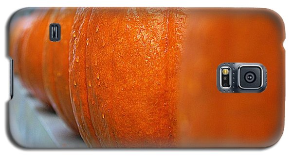 Galaxy S5 Case featuring the photograph Pumpkins All In A Row by John S