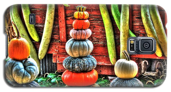 Pumpkins And Gourds Galaxy S5 Case by Linda Segerson