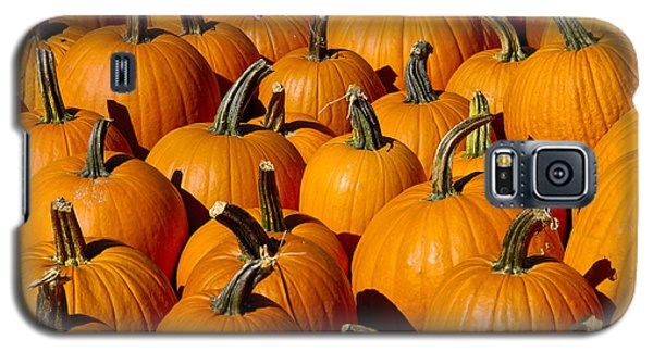 Pumpkins Galaxy S5 Case