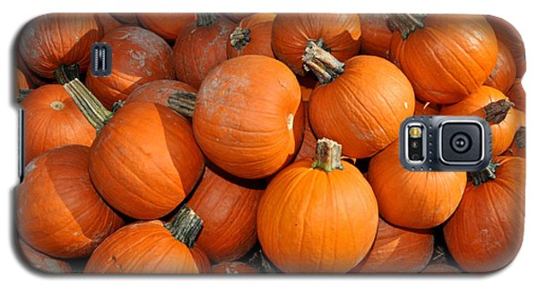 Galaxy S5 Case featuring the photograph Pumpkins by Diane Lent