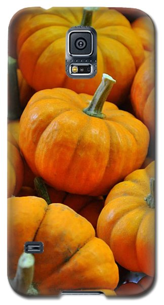 Pumpkins Galaxy S5 Case