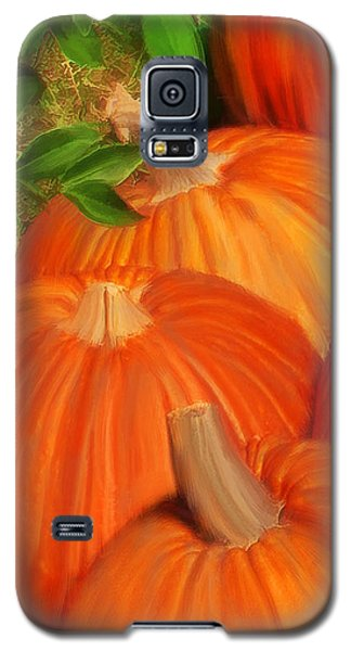 Pumpkins Pumpkins Everywhere Galaxy S5 Case