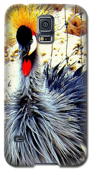 Galaxy S5 Case featuring the photograph Punk by Faith Williams