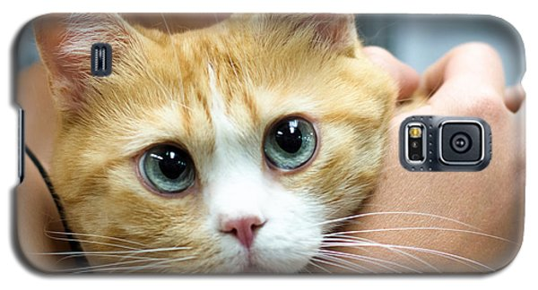 Punky Galaxy S5 Case