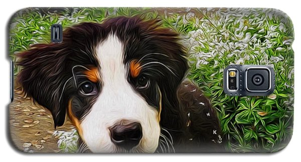Puppy Art - Little Lily Galaxy S5 Case