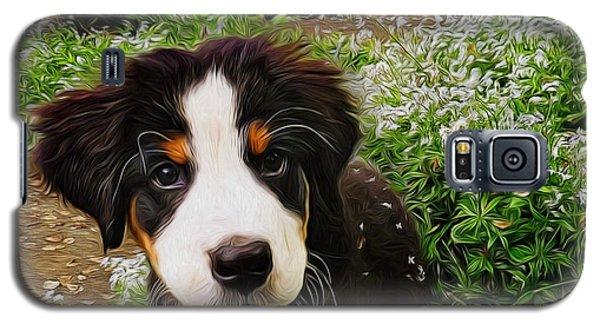 Puppy Art - Little Lily Galaxy S5 Case