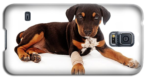 Puppy Laying With Injury Galaxy S5 Case