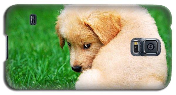 Puppy Love Galaxy S5 Case