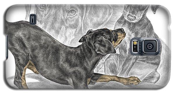 Puppy Love - Doberman Pinscher Pup - Color Tinted Galaxy S5 Case