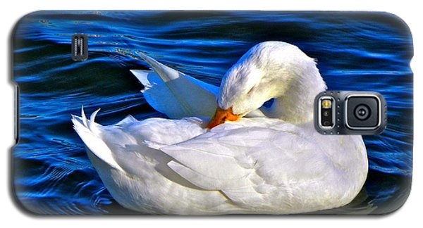 Pure Beauty Galaxy S5 Case by Eve Spring